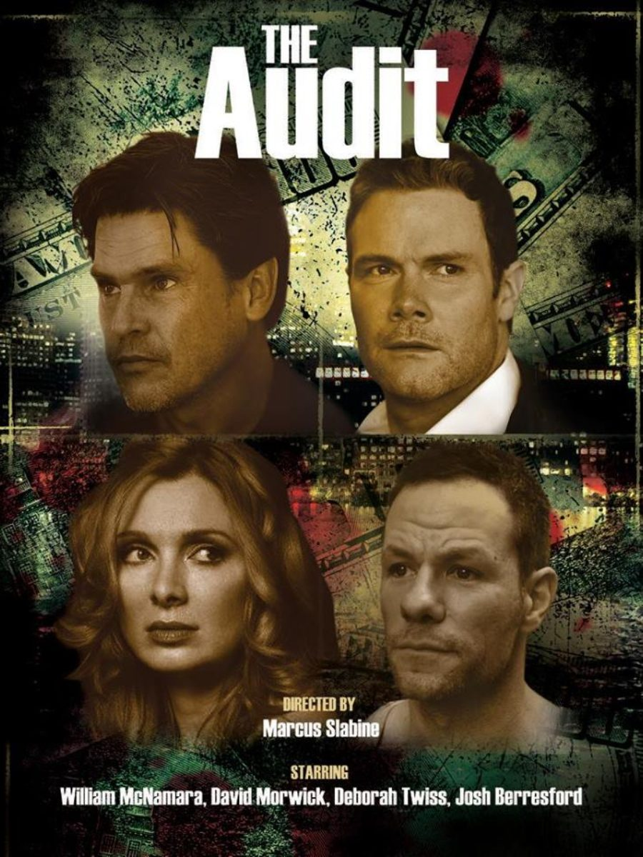 official-poster-of-the-audit